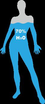 Wasseranteil im menschlichen Körper